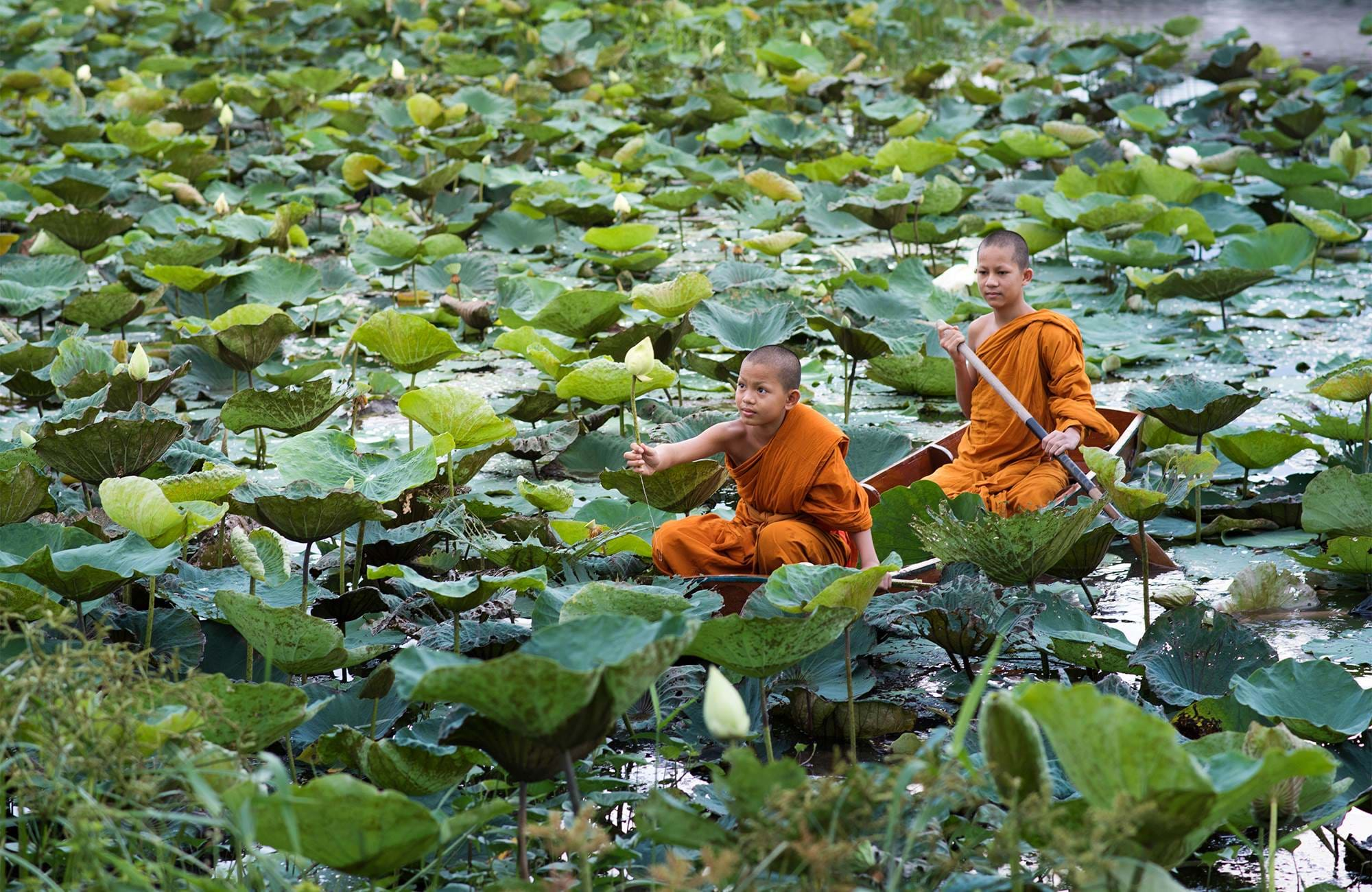 asia-thailand-young-monks-cover